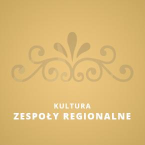 Zespoły regionalne